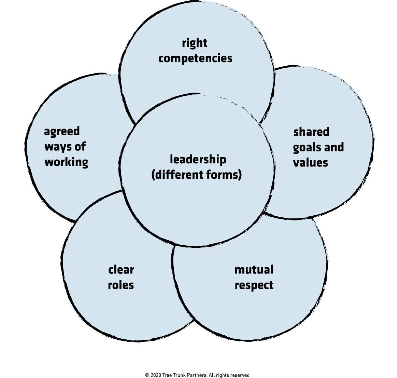 Tree Trunk Model for Team Effectiveness